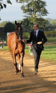 tom trot up